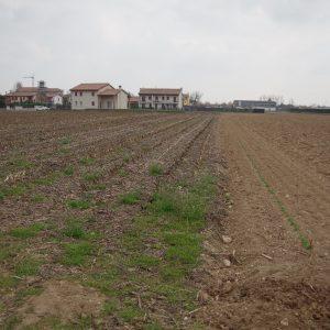 Asta immobiliare - Esecuzione 327/2013 - Lotto unico - (ASSET - Associazione Esecuzioni Immobili Treviso)