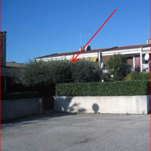 Asta immobiliare - Esecuzione 118/2013 - Lotto unico - (ASSET - Associazione Esecuzioni Immobili Treviso)